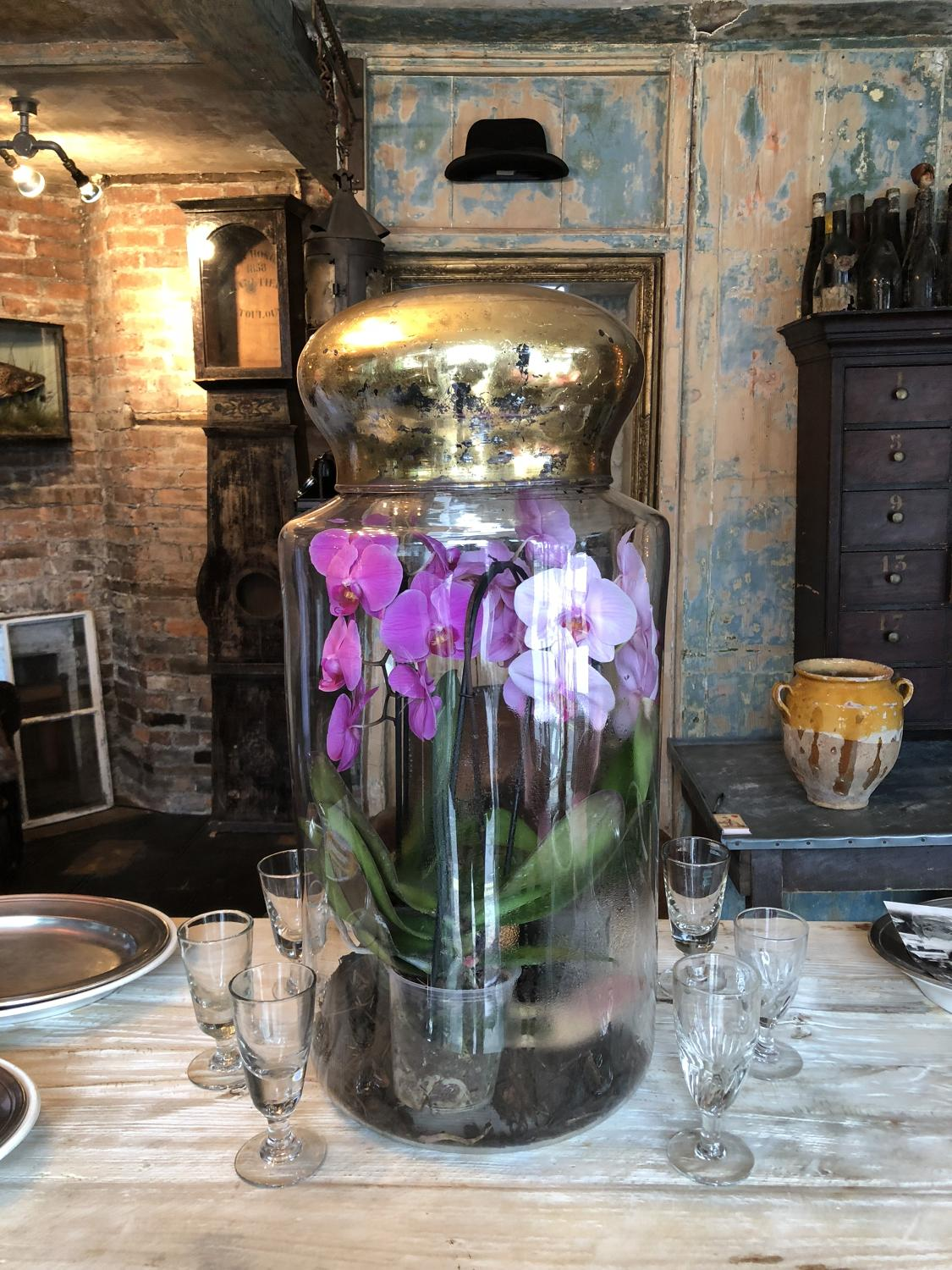 Large 19th Century Glass Display Jar